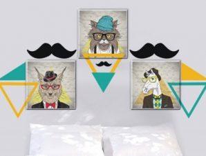 Χίπστερ Ζώα Παιδικά Πίνακες και αυτοκόλλητα 138×62