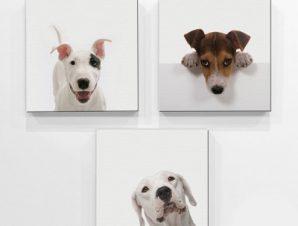Σκυλάκια Παιδικά Mini Set καμβάς 25 x 25 cm