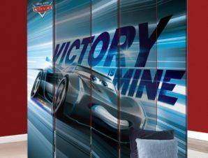 Η νίκη είναι δική μου , Jackson Storm Παιδικά Παραβάν 80×180 cm [Δίφυλλο]